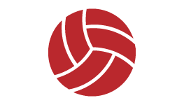 Volleyball - International